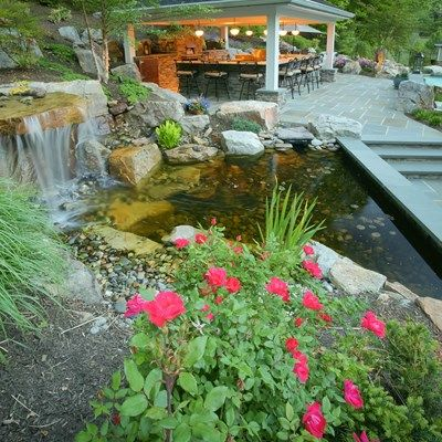 Ultimate backyard - Picture 1570