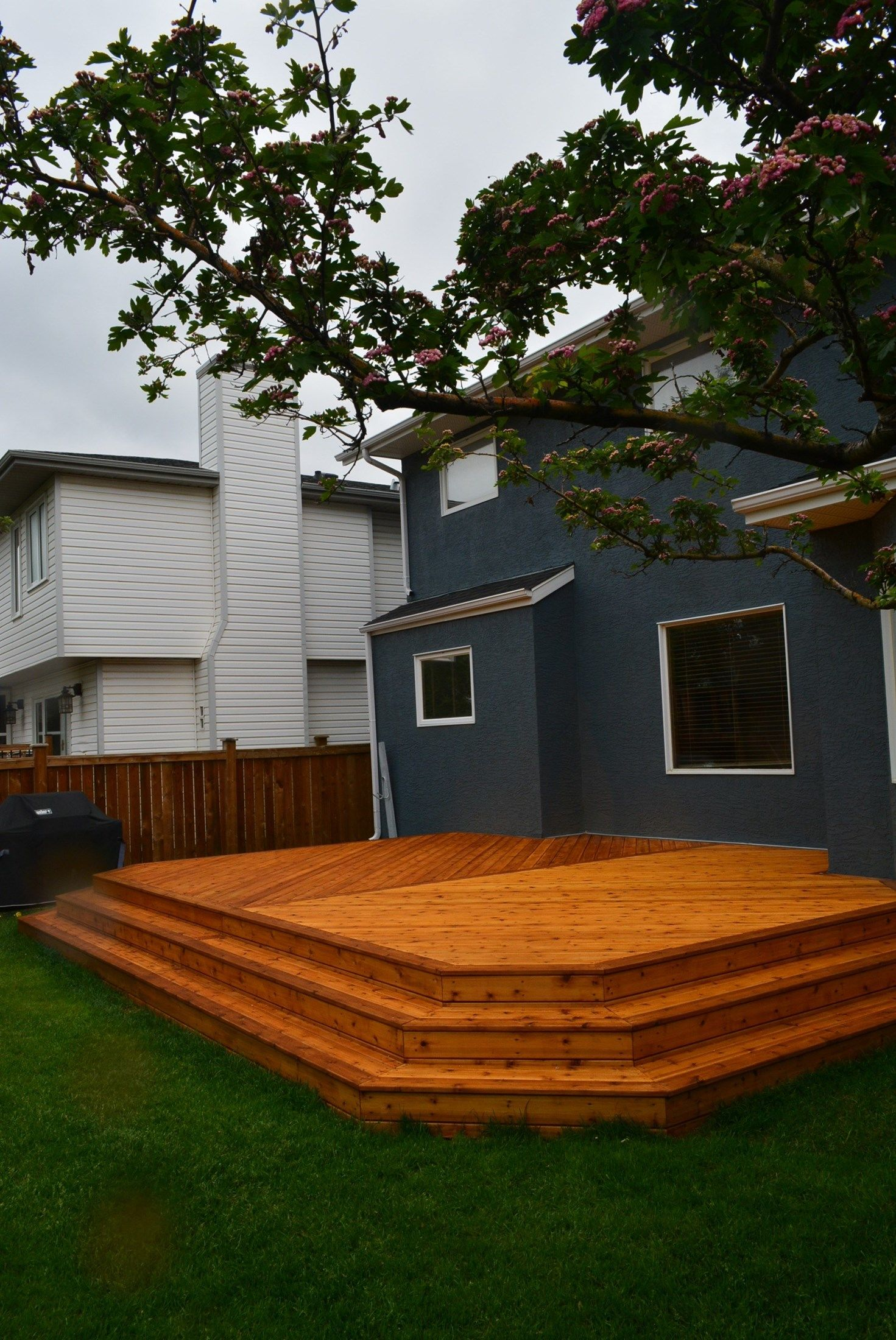 deck 1 - Picture 6314