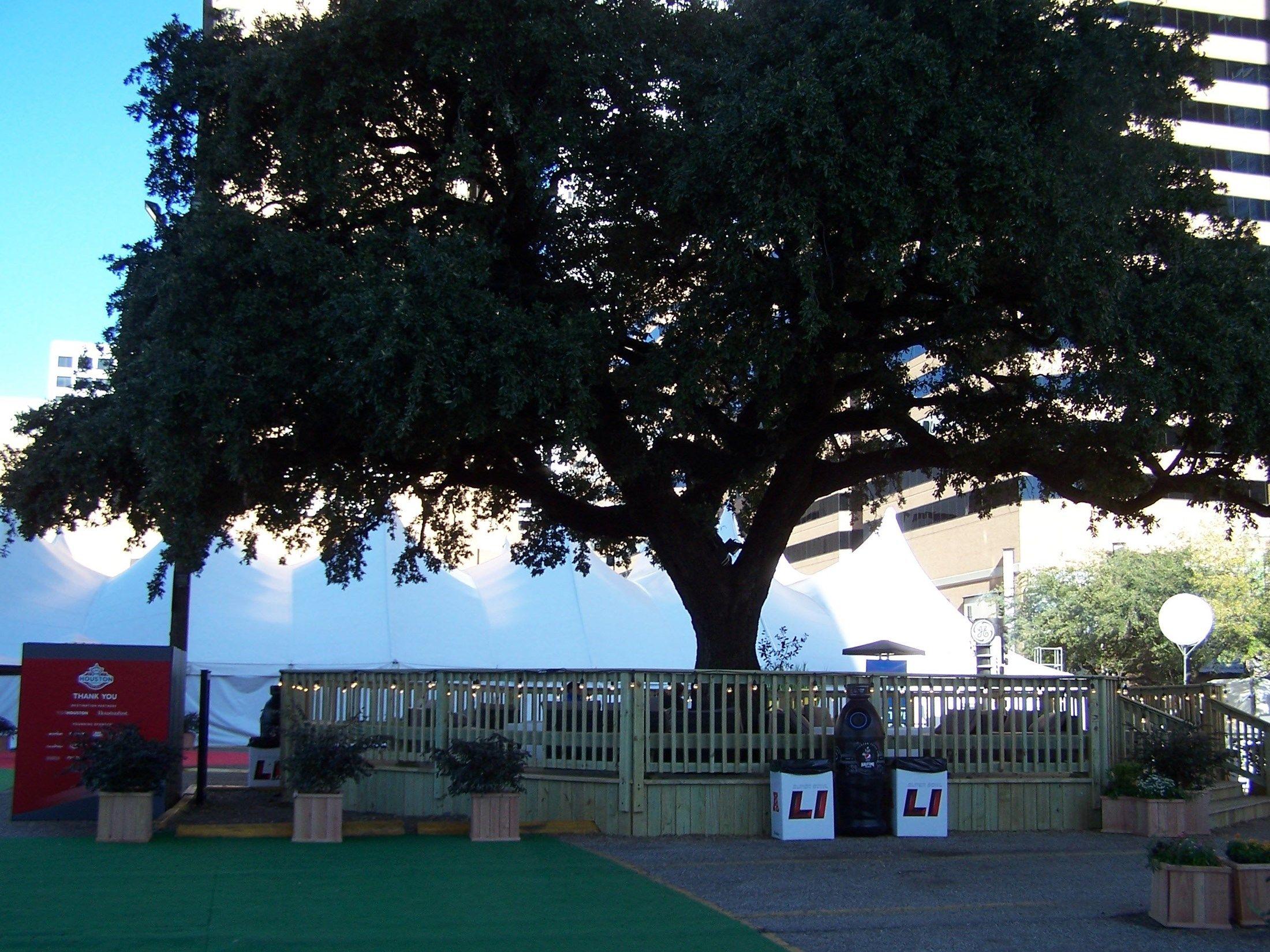 Houston LIve Super Bowl Deck - Picture 6895