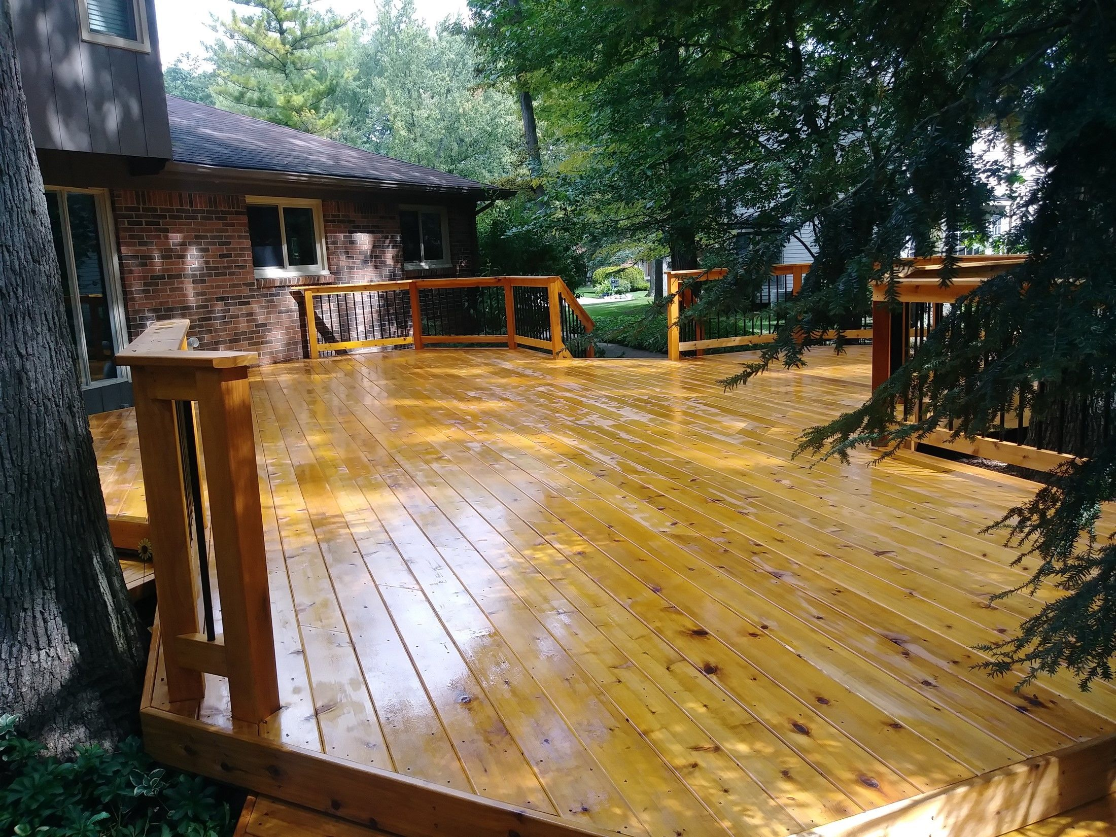 Decks-Cedar, Azek, Treated Etc. - Picture 7877